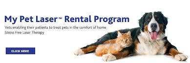 my rental program